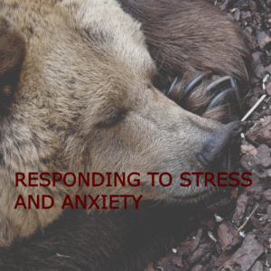 Responding to tress and anxiety thumbnail
