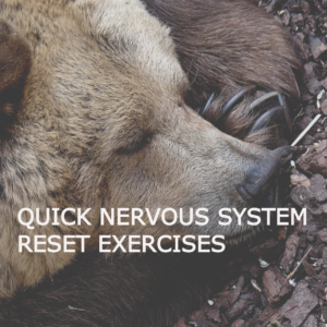 nervous system reset exercises header image